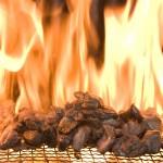 宮崎地鶏炭火焼の究極系=鶏炭火焼レア