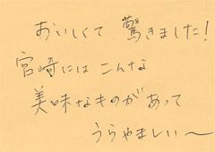 ハガキ集【No.91】