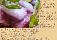ハガキ集【No.205】