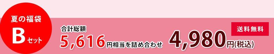 4980円夏の福袋Bセット