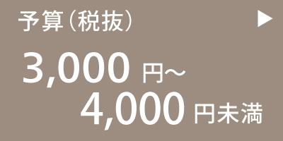 3,000円以上〜4,000円未満のお中元