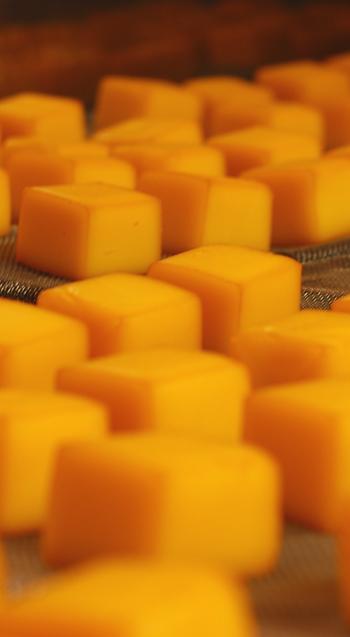 cubeスモークチーズスモーカーから釜出しの状態
