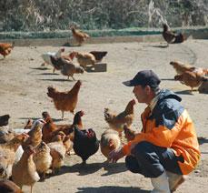 みやざき地頭鶏ももスモークは銀座の名店で取扱い頂いました