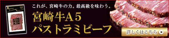 miyazakipasutora_banner