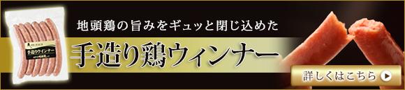 toriwin_banner