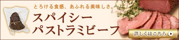 pasutora_banner